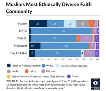 Figure 11: Bar graph showing that Muslims are the most ethnically diverse faith community