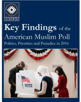 AMP 2016 Key Findings cover