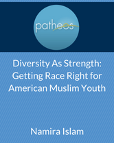 diversity as strength cover page