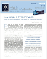 Malleable Stereotypes brief cover