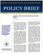 The Crisis in Darfur brief cover