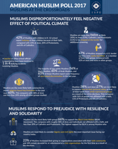 AMP 2017 Infographic 1