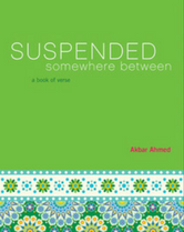 Suspended Somewhere Between book cover