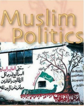 Muslim Politics book cover