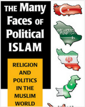 The Many Faces of Political Islam book cover
