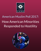 How American Minorities Responded to Hostility