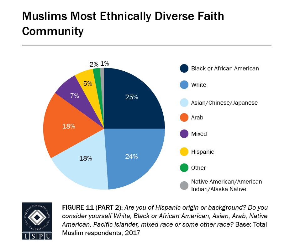 Figure 11, Part 2: Pie graph showing that Muslims are the most ethnically diverse faith community