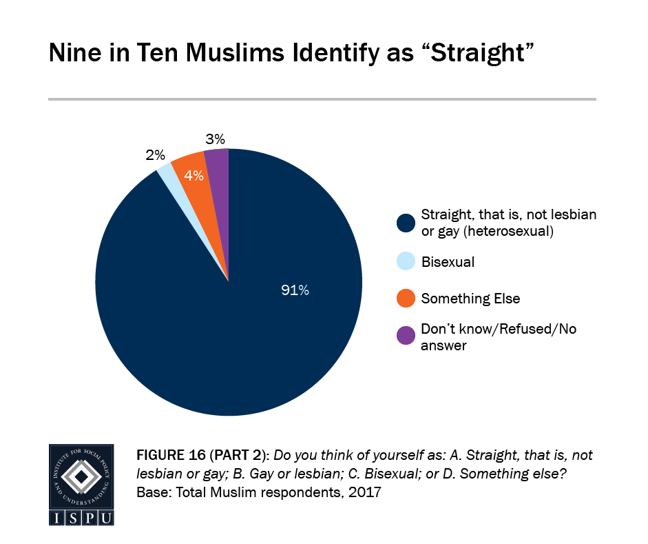 "Figure 16, Part 2: Pie graph showing that 9 in 10 Muslims identify as ""straight"""