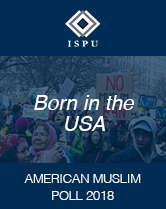 Born in the USA cover image